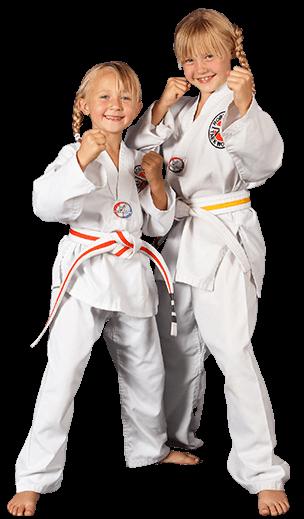 Robinson's Taekwondo Kids Martial Arts