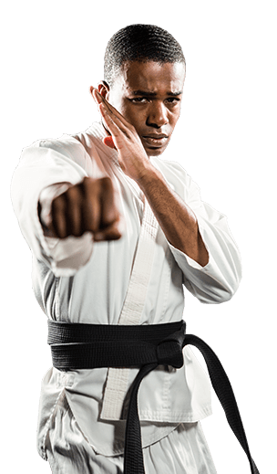 Robinson's Taekwondo adult Martial Arts
