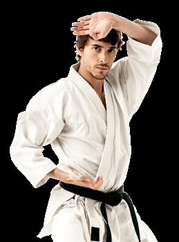 Robinson's Taekwondo book instructor